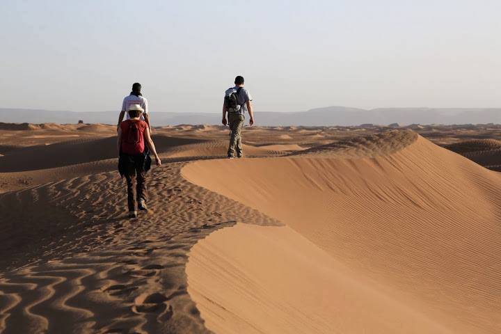 Sahara Drive Experience 5Days